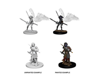 Aasimar Paladin, female. w/swords - Nolzur's