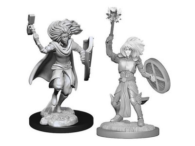 Changeling Cleric, Female - Nolzurs